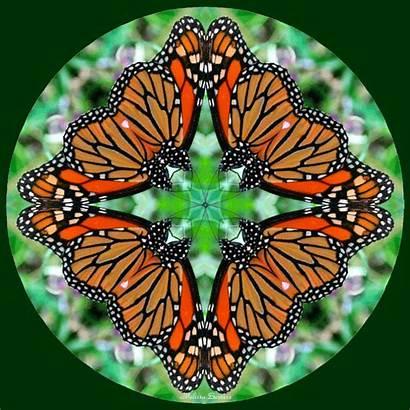Kaleidoscope Butterfly Melbe Creations Geometry Sacred Mandala