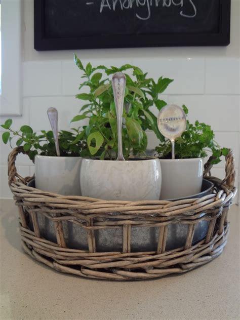 kitchen garden ideas 30 herb garden ideas to spice up your garden