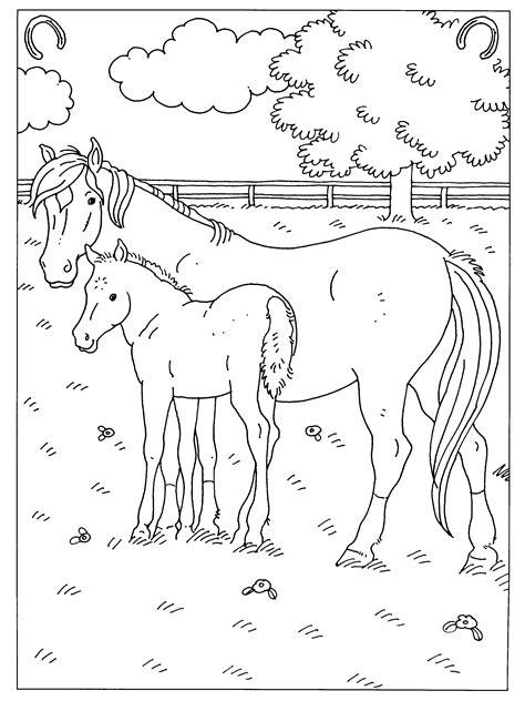 Kleurplaat Paardrijden Aan Het Strand Zonondergang by Kleurplaten Paradijs Kleurplaat Een Paard Met Veulen In