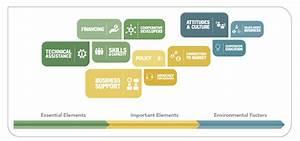 Cooperative Growth Ecosystem