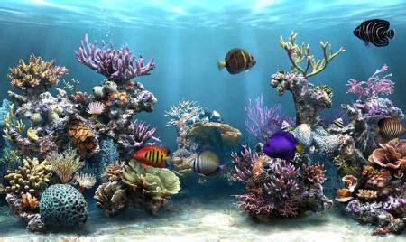 ecran de veille sim aquarium 2