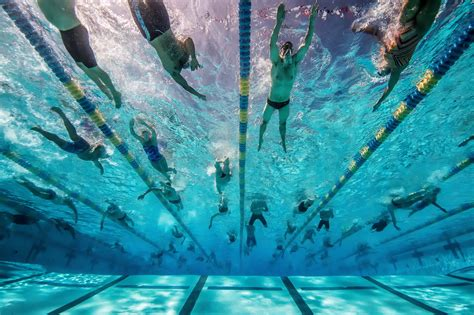 Swimming Saves Lives Foundation Launches 'adult Learn-to
