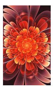 Twisted Fractal Bright Flower 4K HD Trippy Wallpapers   HD ...