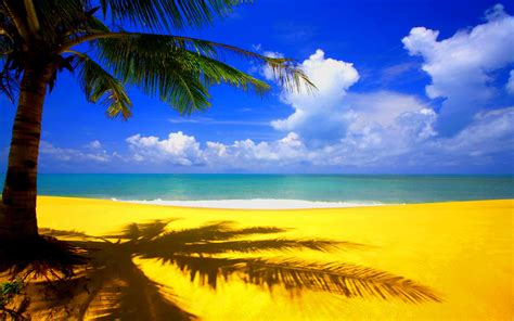 Summer Wallpapers by Summer Wallpaper 1080p 70 Images