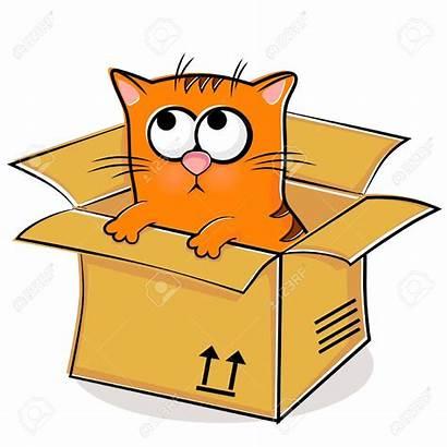 Box Cat Clipart Kitten Transparent Inside Nice