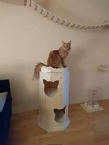 Verkleidung Für Katzen : xxl kratztonne kletterlandschaft f r katzen klettertonne f r katzen ~ Frokenaadalensverden.com Haus und Dekorationen