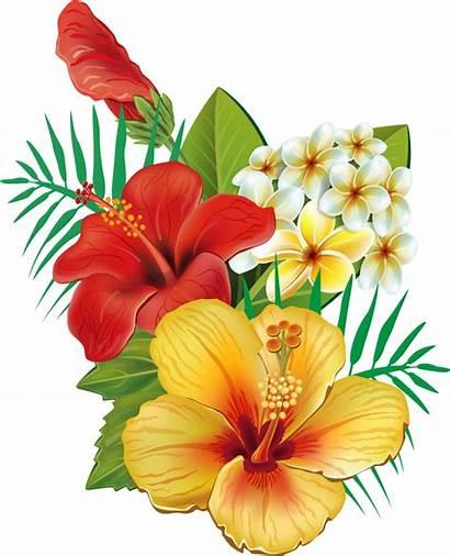 Tropical Watercolor Transparent Hawaiian Flowers Flower Clip