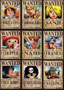 One Piece Wanted Poster New World
