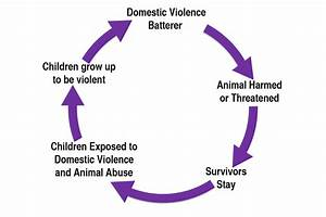 The  U201clink U201d With Domestic Violence