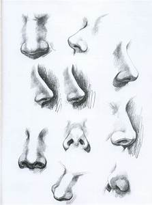 118 best drawing noses images on Pinterest   Nose drawing ...