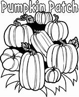 Pumpkins Coloring Pages Celebrate Thanksgiving sketch template