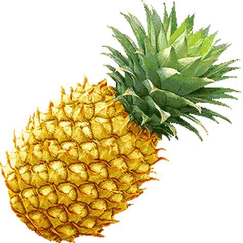 recette de cuisine pour noel soupe d 39 ananas chez jo 04