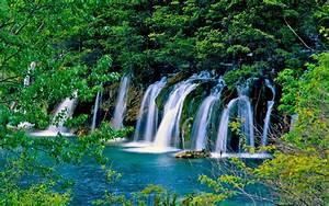 Waterfall, In, Green, Forest, Hd, Wallpaper