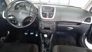 Peugeot 207 Passion Xs 1 6 16v  Flex  2009  2010