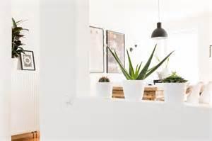 Zimmerpflanzen Für Kinderzimmer : 5 tipps f r zimmerpflanzen pflege deko ~ Orissabook.com Haus und Dekorationen