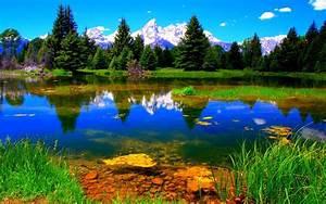 Nature, Landscape, Lake, Green, Vegetation, Wallpapers, Hd