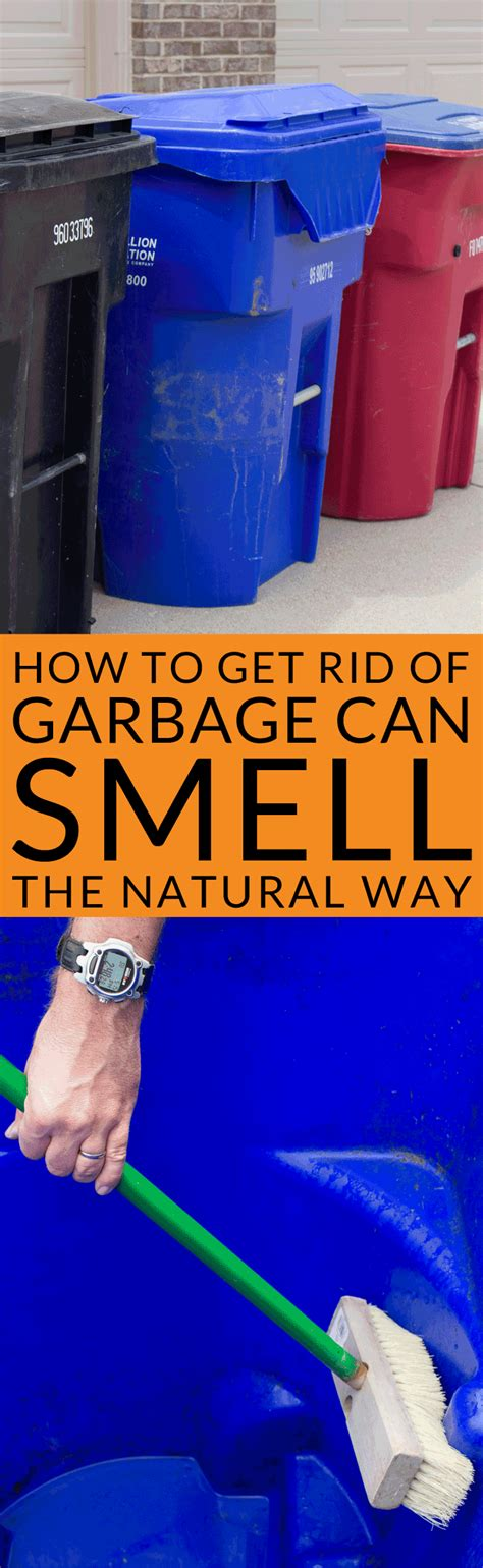 How To Get Rid Of Garbage Can Smell Naturally  Bren Did