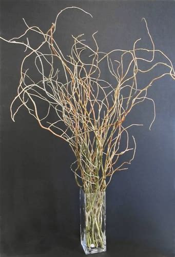 curly willow centerpiece kit shipping included