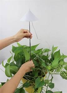 Lampen Für Pflanzen : led pflanzenlampe led grow lampe weiss 7watt f r t pfe ~ A.2002-acura-tl-radio.info Haus und Dekorationen