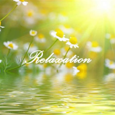 Relaxation: 101 Relaxing Nature Sounds Relaxation and