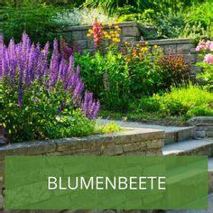 Ideen Für Blumenbeete by Die 76 Besten Bilder Blumenbeete In 2019 Blumenbeete