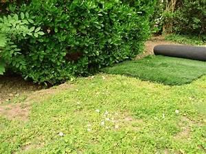Gazon Pour L Ombre : photos 52 du gazon synth tique la belle pelouse ~ Premium-room.com Idées de Décoration