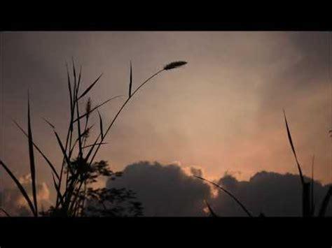 senja background video youtube