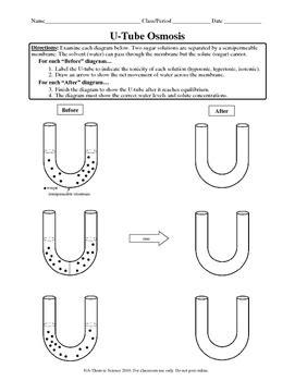 Osmosis Tonicity Utube Worksheet By Athomic Science Tpt