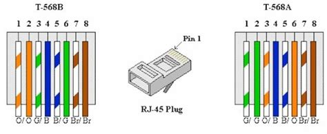 cat5 wall wiring diagram cat5e ethernet wiring diagram wiring diagram and