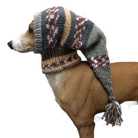 dog clothing ideas  pinterest dog treats diy