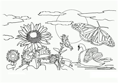 printable nature coloring pages  kids  coloring pages  kids