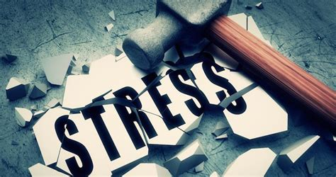 gestion du stress comprendre le stress pour mieux le