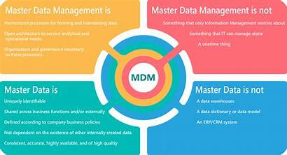 Mdm Management Data Services Master Principles Consulting