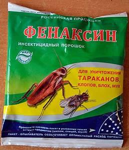 Kakerlaken ähnliche Insekten : puder von kakerlaken eine berpr fung der wirksamen ~ Articles-book.com Haus und Dekorationen