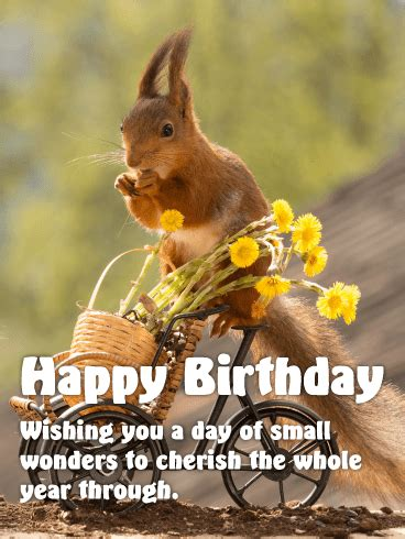 awesome cute animal birthday greeting card images