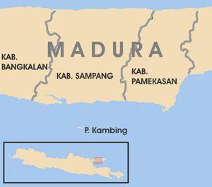 pulau kambing madura visit indonesia