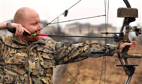 compound bow   money  reviews  tips