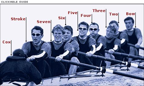 2 Person Crew Boat by Sport Rowing How The Eight Works