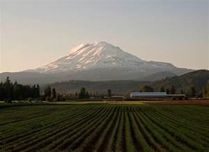 Mount Adams  Washington