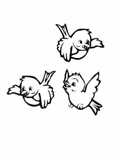 Birds Coloring Bird Pages Sheets Cartoon Trio