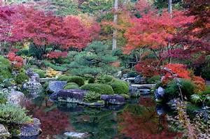 Pflanzen Japanischer Garten : mimurodou garten pflanzen blumen gartenbetriebe ~ Lizthompson.info Haus und Dekorationen