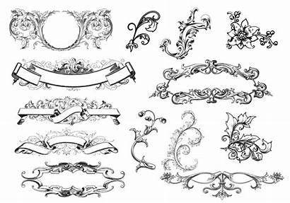 Scroll Vector Antique Ornaments Ornament Vectors Brushes