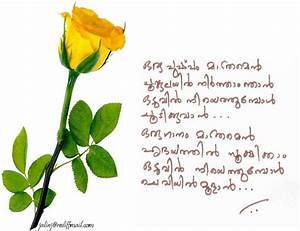 Malayalam Famou... North Star Love Quotes