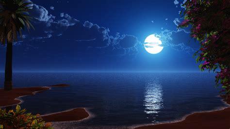 wallpaper tropical beach full moon scenery