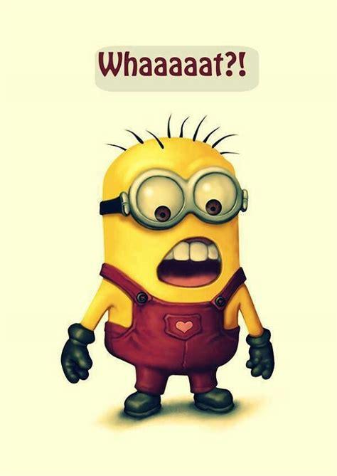lustige minions sprüche minions are so minions lustige minions