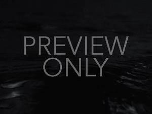 Black And White Kraken | Dan Stevers | Youth Worker