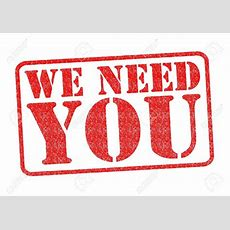 We Need You!  Hillwalking For The Over 60's