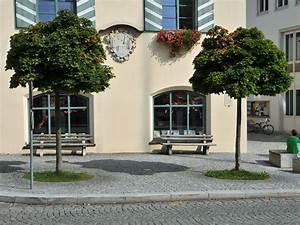 Kleine Bäume Für Vorgarten : kleinb ume der kleinbaum ~ Michelbontemps.com Haus und Dekorationen