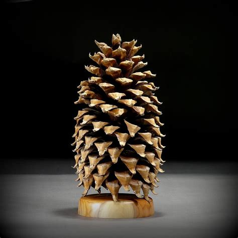 Giant Coulter Pine Cone CP23 by timberturner on Etsy