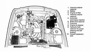 2001 Bmw 325xi Engine Schematics